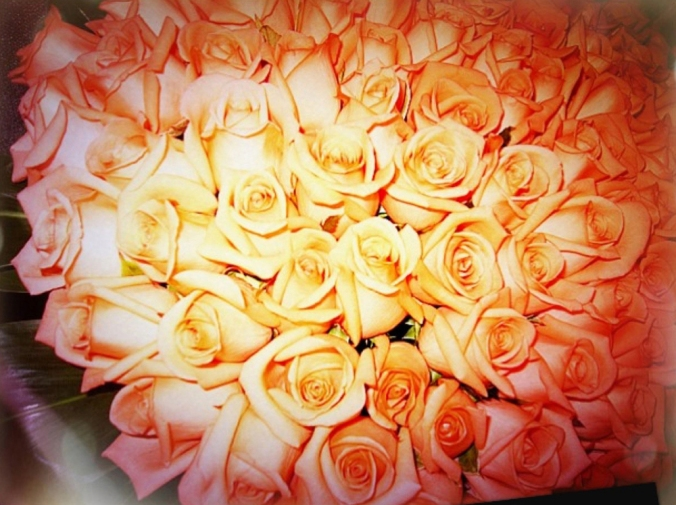 04_100朵玫瑰